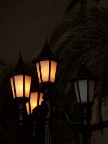 Lamp Post by Stella Levi