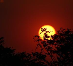 'Sun' by Mehmet Goren