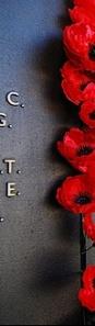 anzac memorial poppies 2