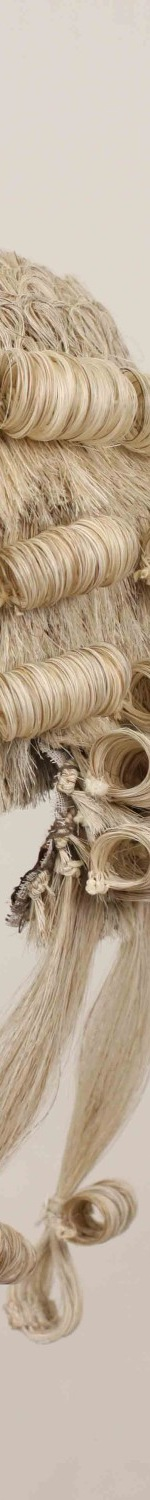 Barrister's Wig c