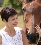 jo horse colour