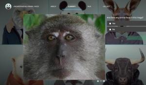 monkey-face-page